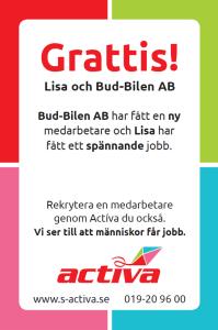 budbilen2_annons
